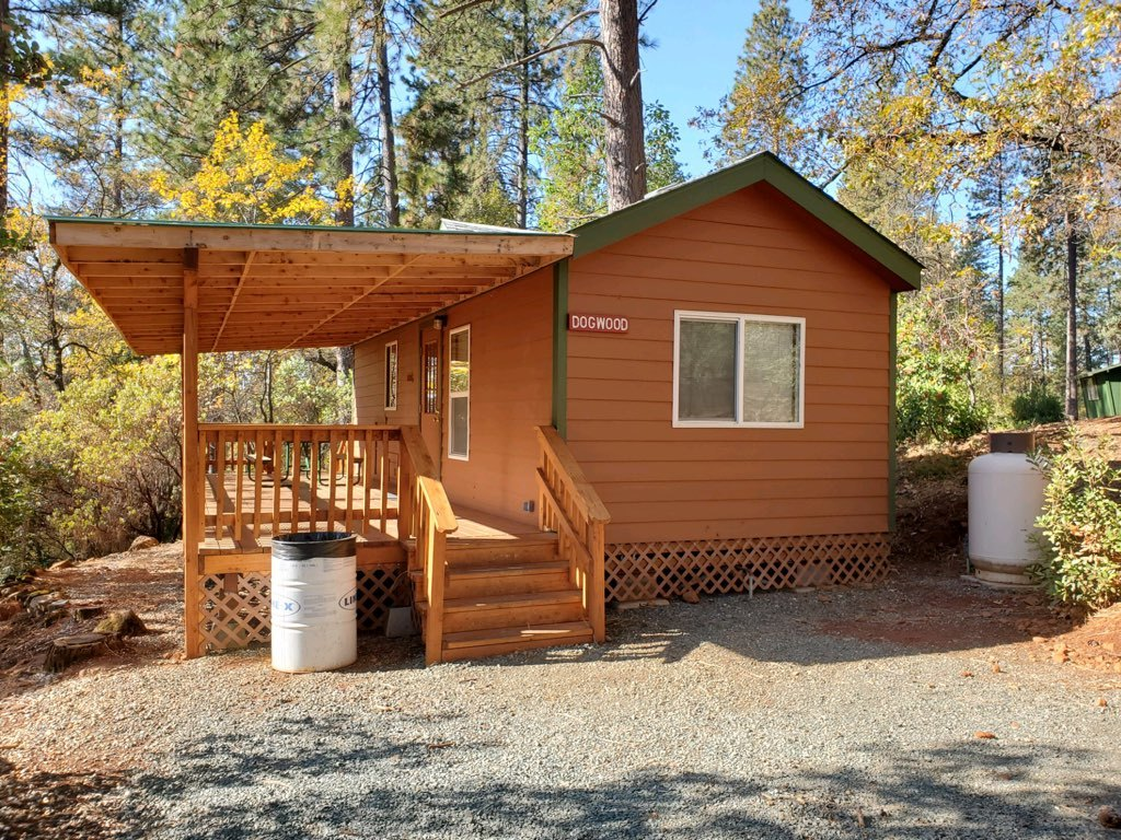 Cabin Mini Premium Dogwood